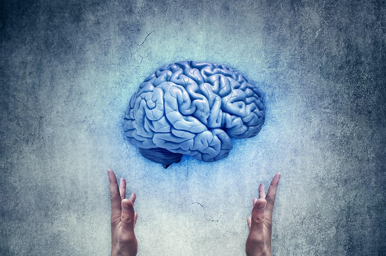 脳にまつわる10の嘘:あの常識は間違っていた